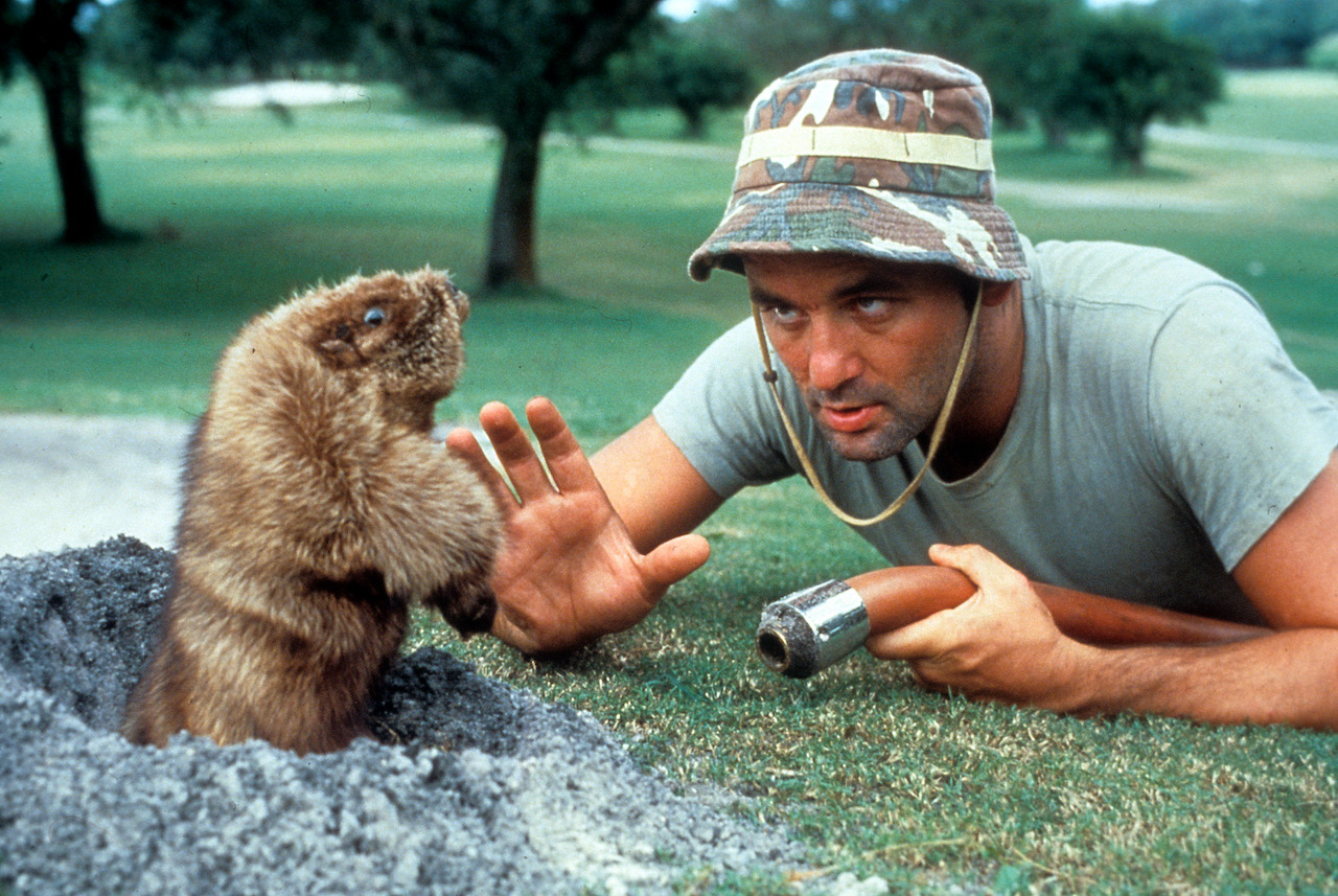 The Best Golf Movies Ever Made