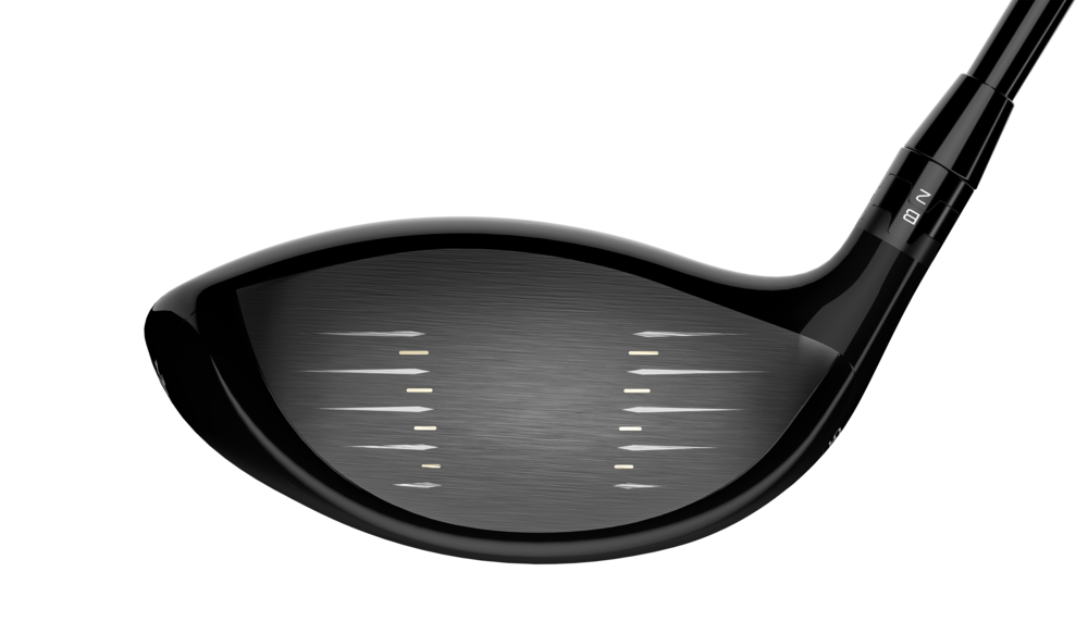Face of the Titleist TS1 Driver