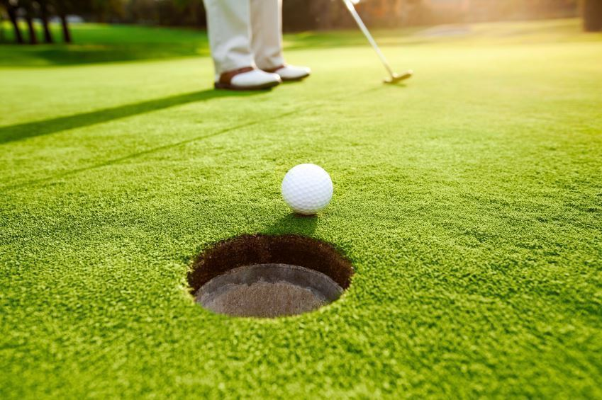 How To Maintain Healthy Bermuda Gr