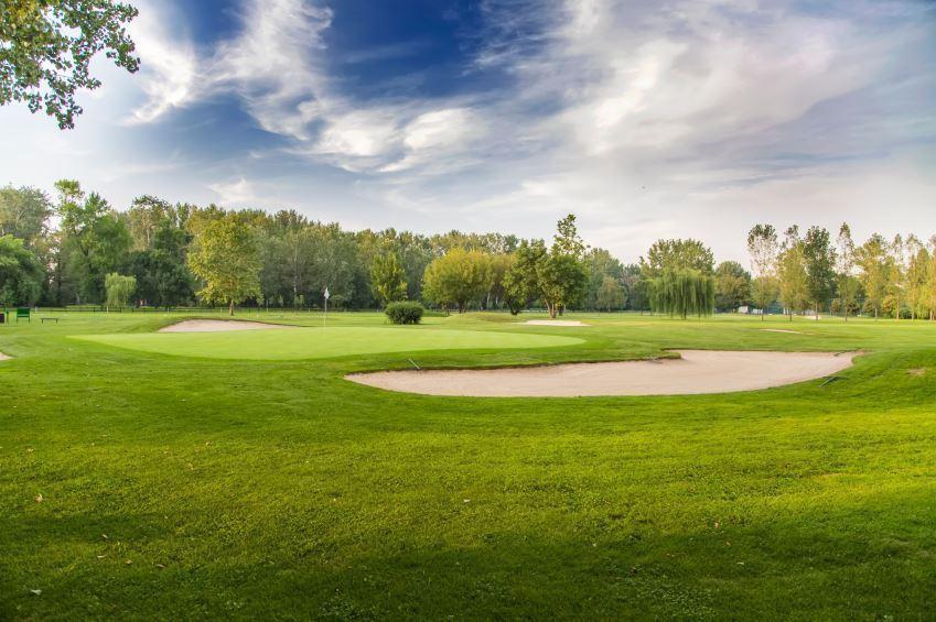 Arm and Shoulder Dumbbell Exercises | GolfLink com